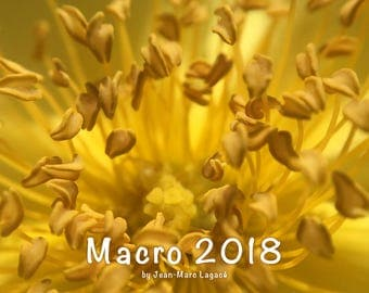 Macro 2018 Calendar - A trip on the smaller side of the world