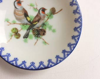 Bird Dish - Bird Decor - Bird Plate