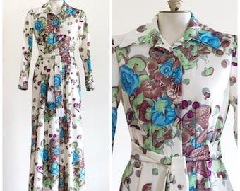 1970s novelty print long sleeve belted maxi dress