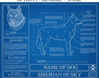 Personalized Siberian Husky Blueprint / Siberian Husky Art / Siberian Husky Wall Art / Siberian Husky Gift / Siberian Husky Print
