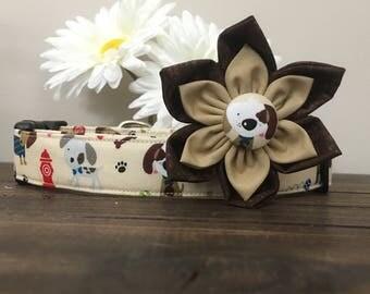 Dog collar, puppy dog collar, brown dog collar, dog collar flower, handmade dog collar, fun dog collar, fall dog collar, summer dog collar