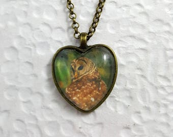 Owl Heart Necklace With Glass Heart Cabochon Nature Jewelry Owl Jewelry Photo Jewelry Photo Necklace Wildlife Necklace Owl Necklace