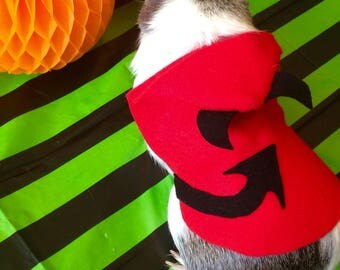 Guinea pig costume for Halloween - Devil costume for small pet
