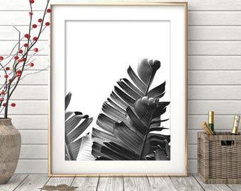 Palm Leaf Print, Botanical Wall Art, Banana Leaf, Printable Poster, Modern Minimal, Digital Download, Tropical Decor, Modern Botanical Art