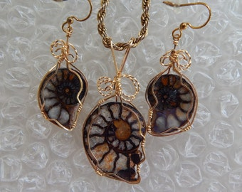 Calcified Ammonite Pendant and Earrings set , Rare White Ammonite, wire wrapped in gold filled wire, Ammonite Set, Fossil Lover