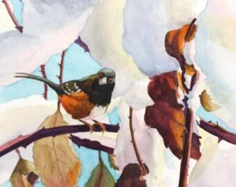 B2  Original Artwork//Winter Colours//Towhee//Birds in Watercolour