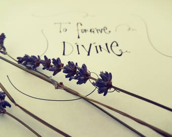 To forgive divine