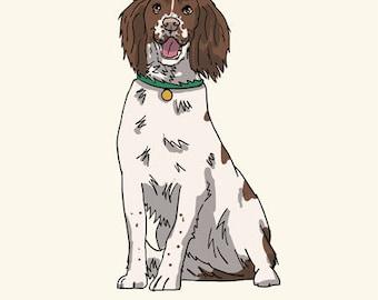 Springer Spaniel Greetings card: Blank