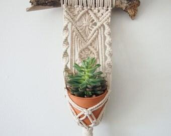 Macrame Plant Hanger Wall Hanging | Mini Pots | Indoor Vertical Garden | Home Decor