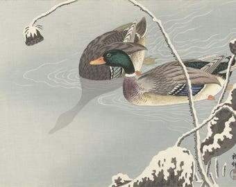 "Japanese Art Print ""Two Mallards near a Snow Covered Lotus"" by Ohara Koson, woodblock print reproduction, fine art, asian art, cultural art"