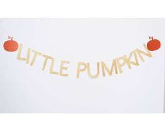 little pumpkin banner, pumpkin birthday, pumpkin decor, halloween party, pumpkin baby shower, baby shower banner, pumpkin party, lil pumpkin