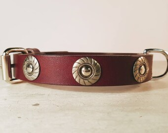 Mahogany leather dog collar silver conchos bling