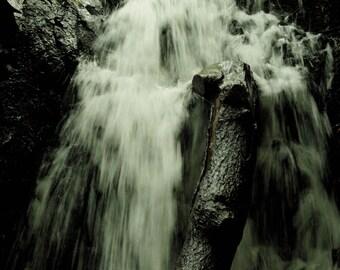 Waterfall With Fallen Tree