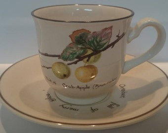 Noritake The Country Diary of a Edwardian Lady Tea Cup and Saucer