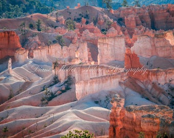 Bryce Canyon NP,Arches,Hoodoos,Photo,Utah,sandstone, red rock,Nature Photography, Landscape photography,Wall Decor, Print, Canvas, Metal Art