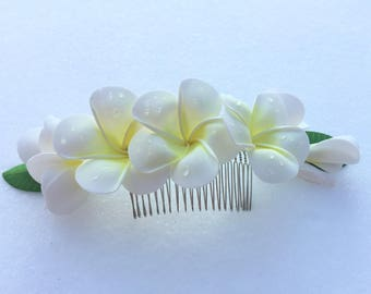 scallop for hair with plumeria flowers