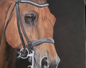 Custom Horse Paintings