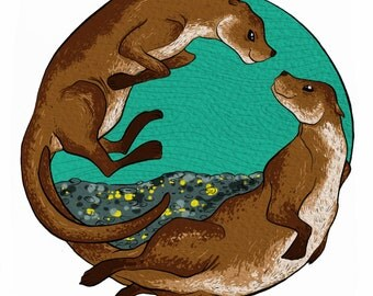 Dyfrgwn // Otters