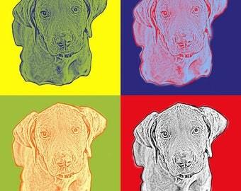 Canvas Wrap Around- Weimaraner Pop Art Andy Warhol Style