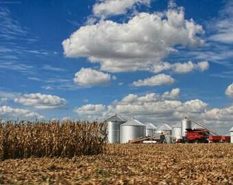 Sunny Harvest Photo Art - Autumn Cornfield and Silver Grain Silos Photo - Brilliant Blue Sky and Golden Fields Farmland Wall Art - Rural USA