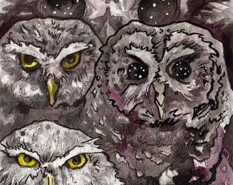 Three Owls in Ink - Original Painting of Spooky Owls - Watercolor and Ink Owl Art - Painting of Owls by Jen Tracy for Horror Story