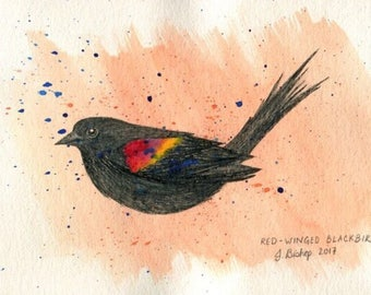 Red Winged Blackbird Bird - Original Ink Watercolor Painting Drawing - 4.5 x 7