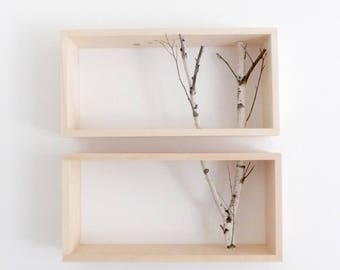 white birch forest wall art/shelf -set of 2, birch branch, framed birch art, floating shelves, display shelves, shadow box