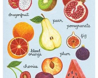 Illustrated Fruit Print, Fruit Art Print, Garden Art, Kitchen Art, 8 x 10 Art Print