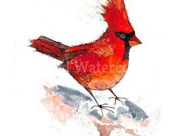 Little Red Cardinal 21cm x 29.5cm Watercolour print
