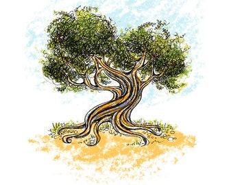 Olive Tree, 8 x 10, Illustration, Ink Drawing