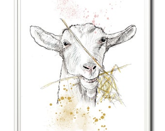 Goat, wall art, home decor, limited edition print. From an original painting by Paula Jeffery. Art print.