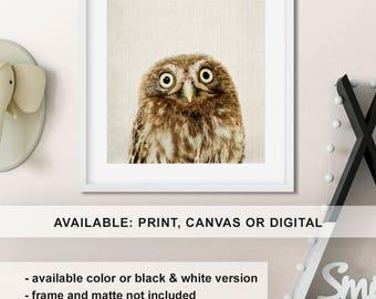 Woodland Wall Decor owl wall decor | etsy
