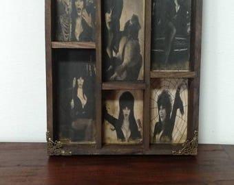 Queen of Horror Cabinet of curiosities