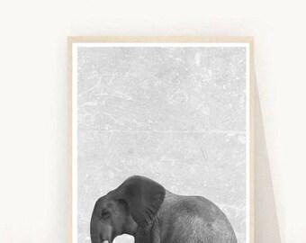 Animal Print, Elephant Print, Elephant Wall Art, Elephant Nursery Decor, Printable Art, African Animals,  Animal Nursery, Wall Decor