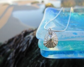 Cornish Solid Silver Dainty Limpet Shell Necklace hallmarked
