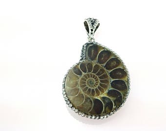 Fossil pendants etsy ammonite pendant ammonite fossil genuine fossilized polished fossil natural ammonite cabochons mozeypictures Gallery
