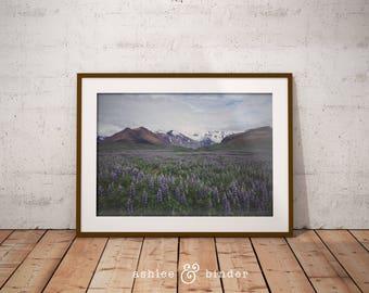 Flower Field Photography Print, Mountains, Scandinavian Print, Nordic Art, Modern Minimalist, Landscape, Snow Capped Mountains,Instant Print
