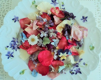 Dried wildflowers etsy for Dried flowers craft supplies