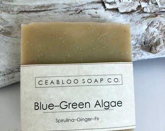 Blue green algae soap, Spirulina, anti-aging soap, botanical, vegan, facial soap, moisturizing, essential oil, natural, handmade, gift idea