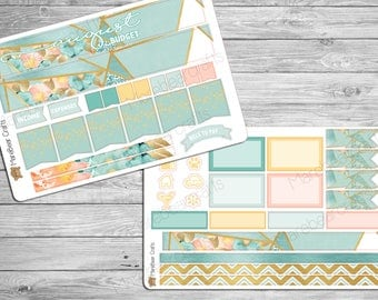 August Budget Sticker Set! For your Erin Condren Planner, Recollections planner or any Planner!