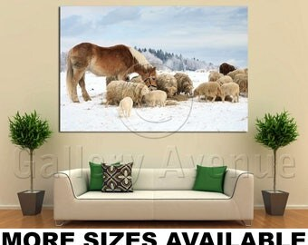 Wall Art Giclee Canvas Picture Print Gallery Wrap Ready to Hang Herd of Sheep Skudde and Horse 60x40 48x32 36x24 24x16 18x12 3.2