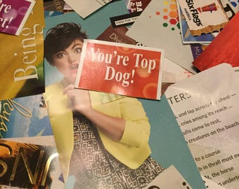 250 Pre cut magazine images words and phrases | For Collages and Scrapbooking