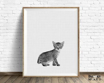 Cat poster Cat print Cat art print Cat wall art Cat nursery art Cat lover gift Cat gift Kitten download Baby kitten print Kitten photo print