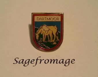 Dartmoor Pin