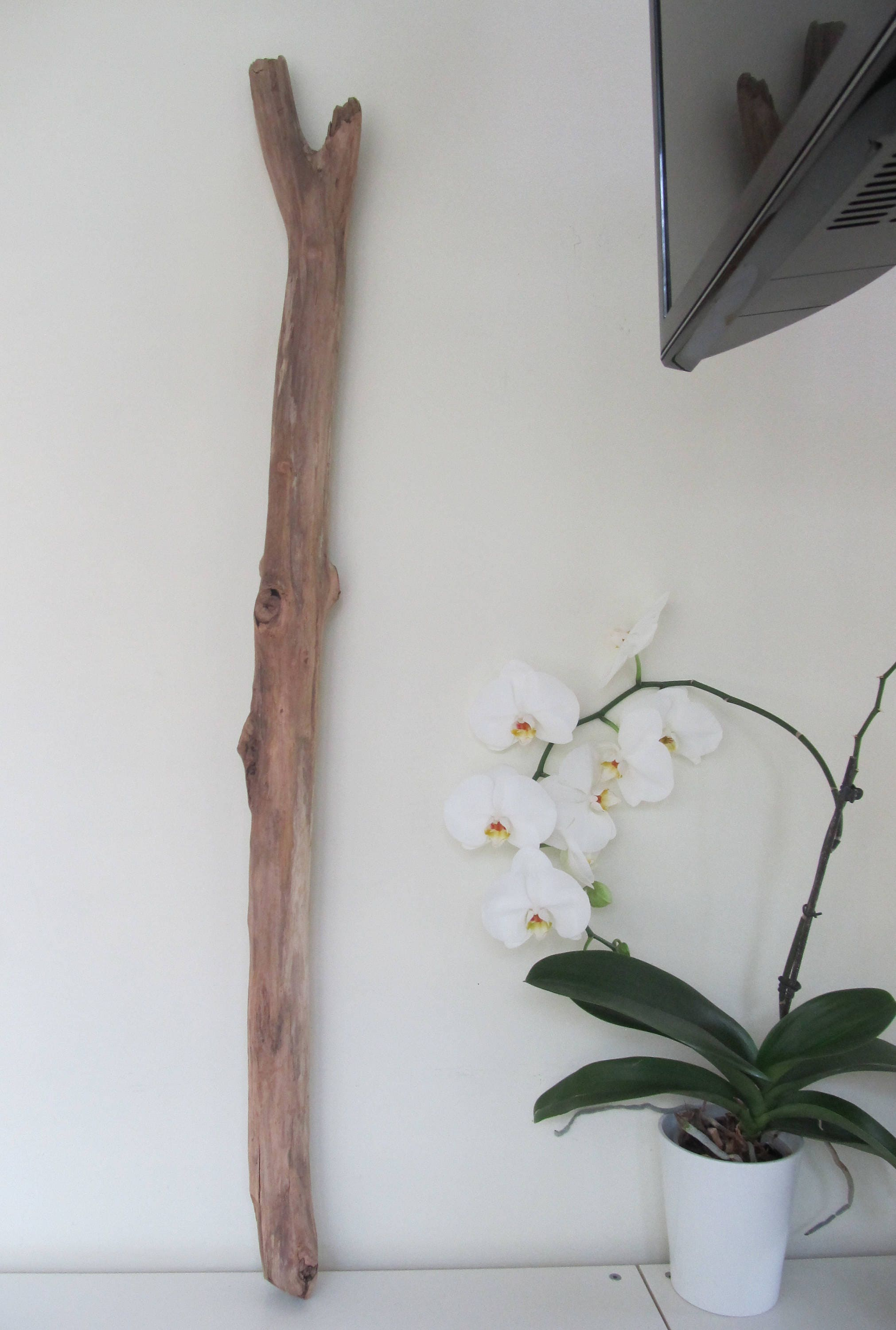 45 Large Driftwood Branch Hanging Ceiling Lamp Driftwood