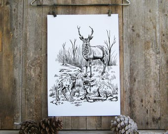 Deer Printable, Black and White Wall Art, Deer Family Clip Art, Nature Poster, Coloring Pages, Nursery Decor, Stag Print, Back to school