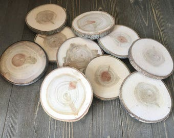 Set of 10 Wood Slices - Tree Branch Slices - Rustic Wedding Decor - Large Wood Blanks - Wood Discs - Wood Rounds - Log Pieces - Wood Crafts