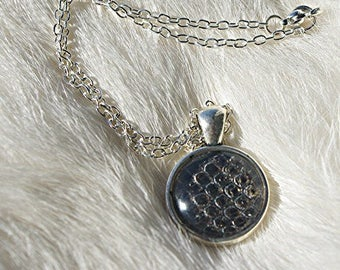 Real Snake Skin Ball Python Shed Pendant Necklace - Taxidermy Jewelry