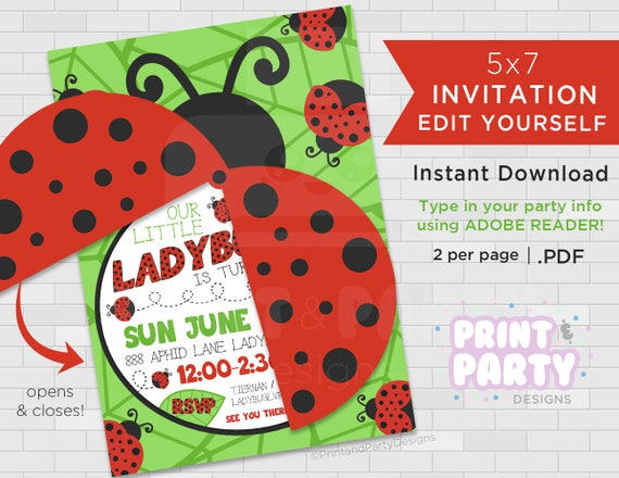 Printable Girlss Ladybug Birthday Party Invitations Summer Ladybug