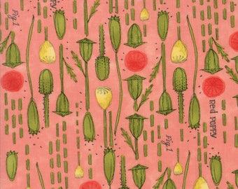 Moda Poppy Mae Quilt Fabric 1/2 Yard By Robin Pickens - Pods Petal 48602 14